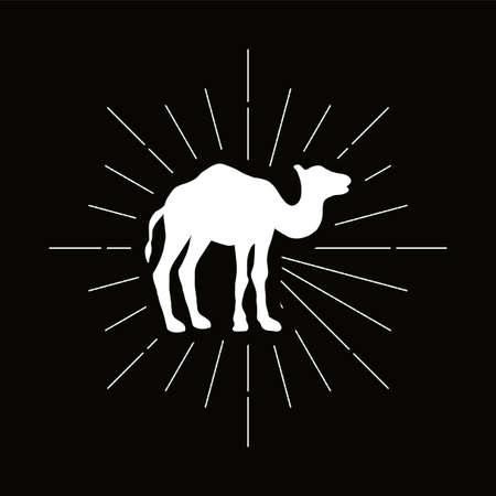 Retro one humped camel silhouette. Exotic animal vector icon. Wilderness, desert fauna symbol