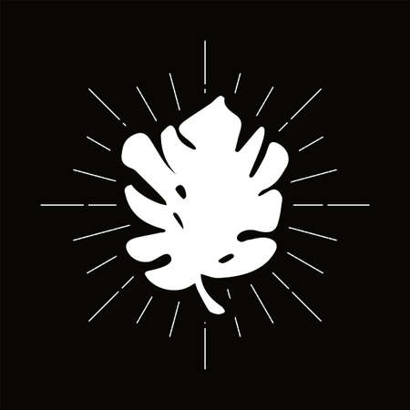 Retro monstera leaf silhouette. Philodendron, palm tree foliage vector badge. Jungle flora symbol 向量圖像