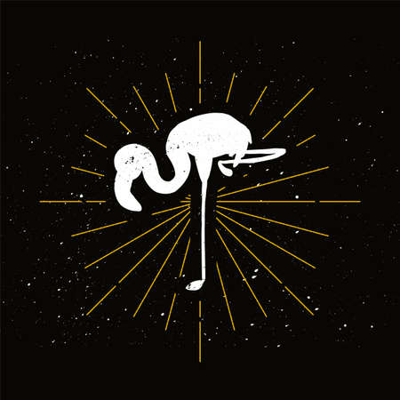 Pink flamingo silhouette badge. Exotic elegant bird vector icon. Ornithology, african fauna symbol Archivio Fotografico - 124891483