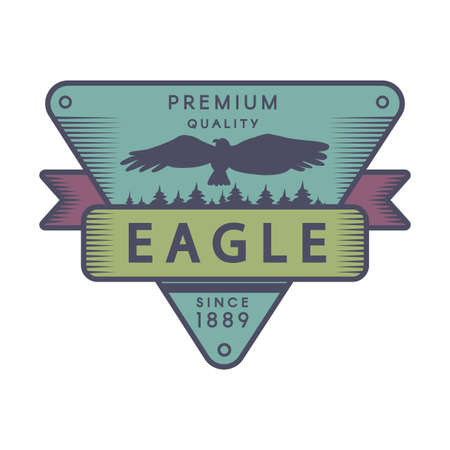Recreational park color template. Forest camp retro vector symbol. Flying eagle silhouette 일러스트