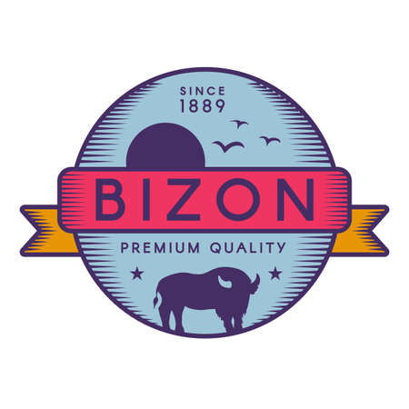 Bizon vector template. American buffalo, flying birds and sun silhouette. Wild animal
