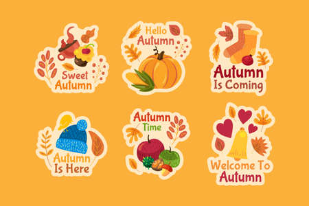 Set of autumn stickers. Cute cartoon autumn labels on orange background isolated. Funny badges with lettering and fall symbols: leaves, pumpkin and apples. Vector illustration