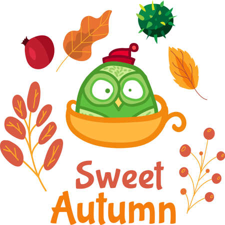 Sweet autumn sticker with cute owl in cup over colorful leaves background. Funny doodle label for hello september concept. Cartoon illustration