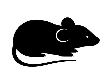 Black rat, mouse, rodent, cute silhouette on white