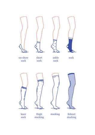 Image vectorielle. Un ensemble de chaussettes et bas féminins de différentes longueurs. Chaussettes et bas sur la jambe d'un mannequin. Conception plate