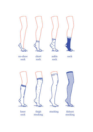 Vector image. A set of female socks and stockings of different lengths. Socks and stockings on the leg of a dummy. Flat design