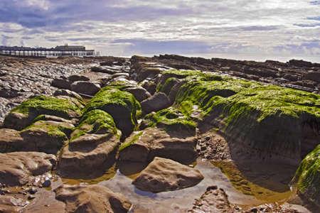 Hastings, Egyesült Királyság - April 2009: apály leleplezésében algák sziklás felületen, Hastings viktoriánus móló a háttérben a tűz előtt