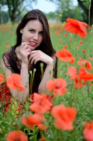 pretty brunette woman: Young female model posing surrounded by poppies flowers. Brunette girl wearing red dress. Stock Photo