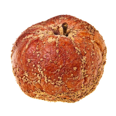 Rotten apple isolated over white background. photo