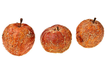 Three rotten apples isolated over white background. photo