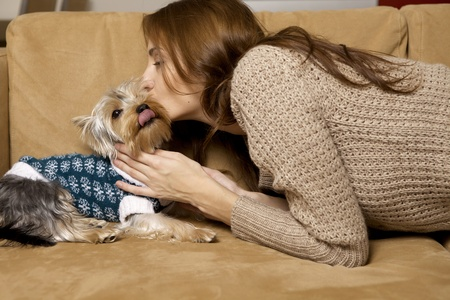 Cute young brunette girl with her Yorkshire terrier puppy lying on sofa Stock Photo - 12361998