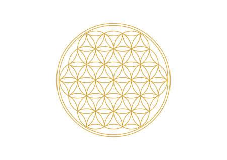 Flower of Life - Gold  イラスト・ベクター素材