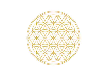 Flower of Life - Gold Ilustrace