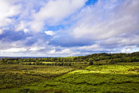 Early morning clouds glow over the lush landscape of East Maui
