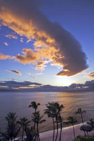 Sunset casts a golden glow over Kaanapali Beach on Maui. Stock Photo - 2024929