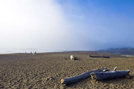 Fog rolls over a California beach with strollers and driftwood Stock Photo