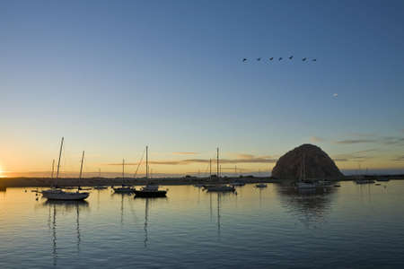 A flock of geese flies over Moro Bay harbor at sunset