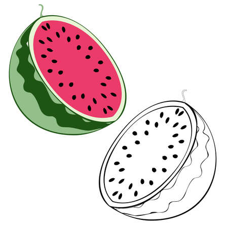 An outline vector illustration of two watermelon halves isolated on white background. Designed in black and white and green colors for prints, wraps and as a coloring page for kids and adults.