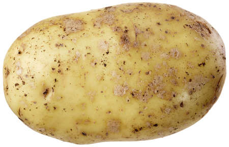 A large potato with rich detail and without shadow photo