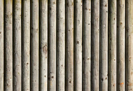 A background texture made of wooden logs photo