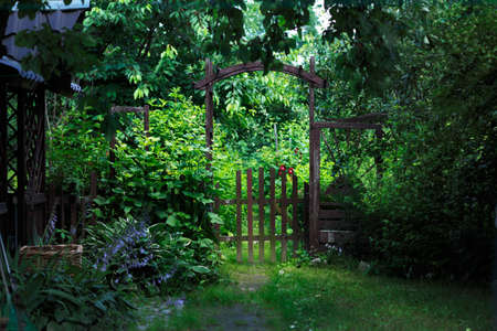 garden gate: A gate to a green blooming garden in the middle of a warm summer