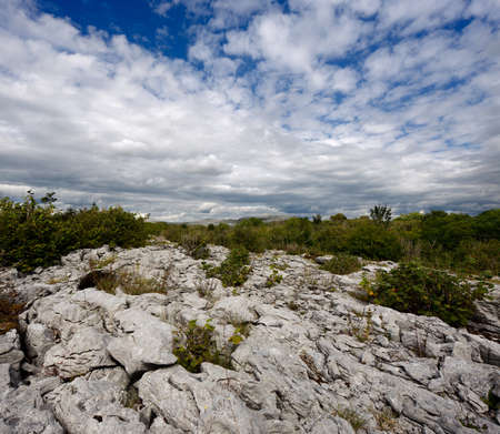 limestone: Rocky landscape of the Limestone Pavement Mountains in The Burren in County Clare, Ireland Stock Photo