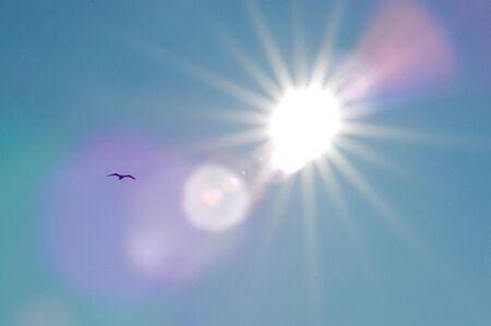 Flying into a Blazing Sun Stock Photo