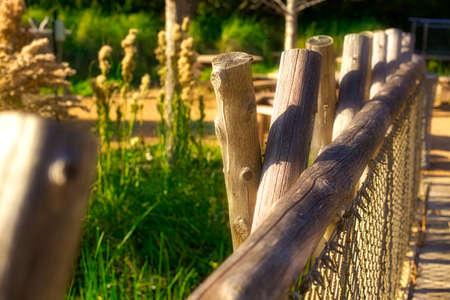 日当たりの良い木製の橋 写真素材
