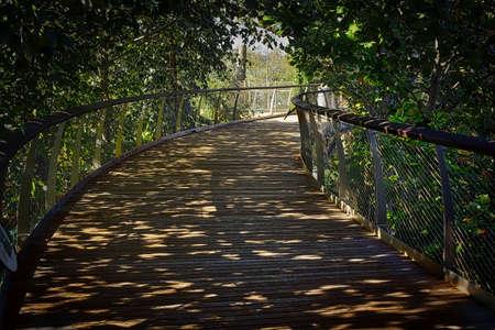 shady: Shady Brown Bridge Stock Photo