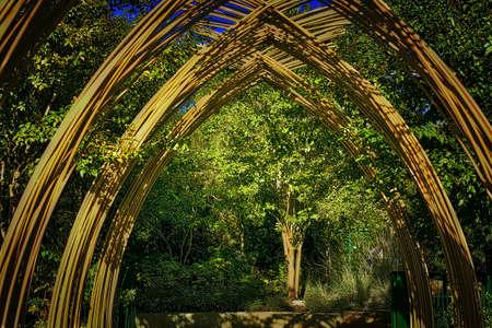 木製アーチ