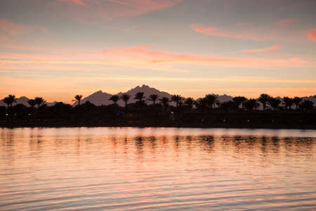 red sea: Red Sea, the mountains and palm trees at sunset Stock Photo