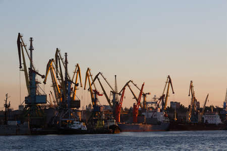 Many big cranes silhouette in the port at golden light of sunrise reflected in water. Berdiansk, Ukraine Editorial