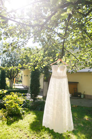 beautiful wedding dress hanging on a tree in a garden
