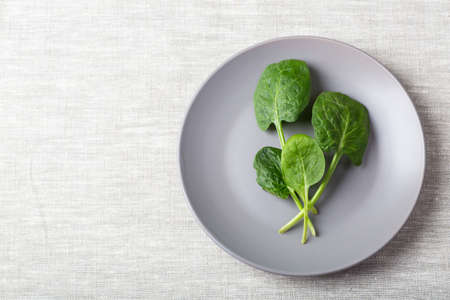 Fresh spinach leaves on a grey plate on a linen tablecloth with place for text Zdjęcie Seryjne
