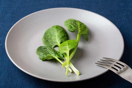 Fresh spinach leaves on a grey plate on blue linen tablecloth Zdjęcie Seryjne