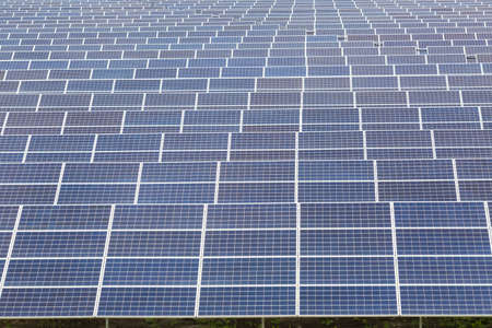Many solar panels closeup at sunny day - green energy technology as background