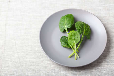 Fresh spinach leaves on a grey plate on a linen tablecloth with place for text Standard-Bild