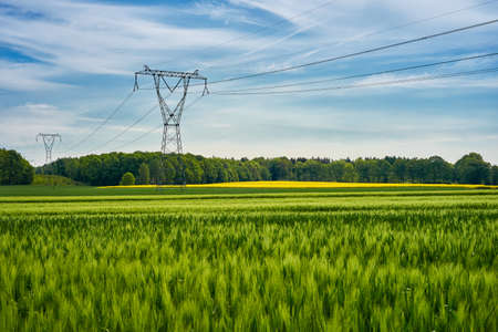 High voltage poles standing in a field under a blue sky. Juicy green fields on a colorful summer country landscape. Stock Photo