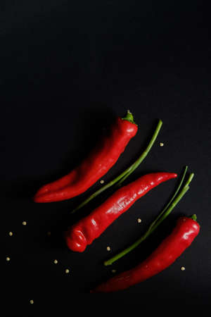 Next to the chili pepper are a few sprigs of greens and grains of pepper
