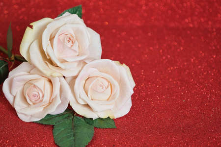 Valentines day card with three beige Roses on red boke Background. Copyspace - Love and Wedding Day concept Bokeh red color background.