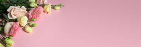 pink roses and eustoma on a pink background. Mothers day concept and copy space. Banner