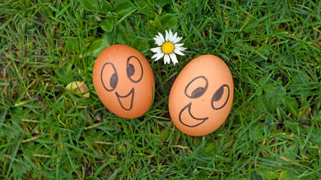 Happy eggs in a park photo