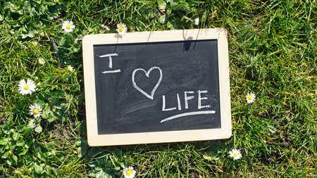 love of life: Io amo la vita scritta su una lavagna in un parco