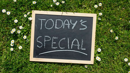 Todays special written on a chalkboard in a natural area on a sunny day photo