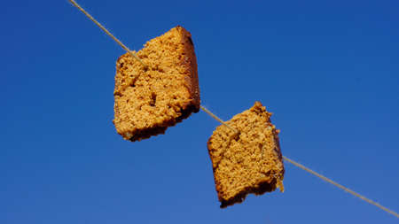 joyfull: Famous old Dutch game, gingergread eating of a rope for Kings day