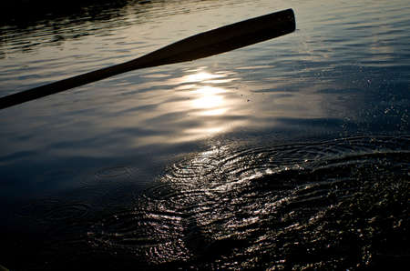 reflektion: Paddle in the evening sun