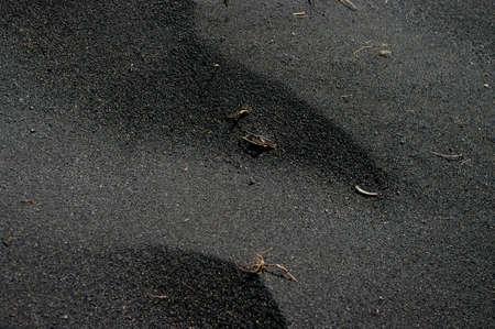 Black sand 版權商用圖片 - 10900528