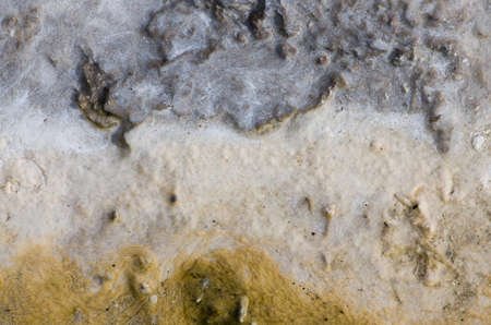 Geological Organic Texture with sulphur and sinther, ground of geothermal active area.