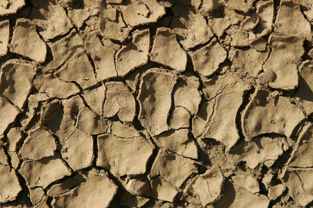 Detail Photo of dry cracked earth during drought.