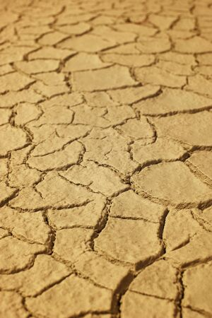 waterless: Dry cracked earth.